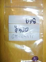 2010_0927_110003-DSC02967.JPG