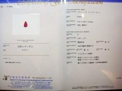 2010_1217_150725-DSC03467.JPG