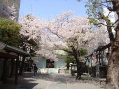 2011_0410_124810-DSC04469.JPG