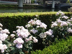 2012_0527_100700-DSC07757.JPG