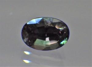 RIMG7491 (2).JPG